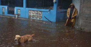 Suspenden clases en Guerrero por tormenta Narda